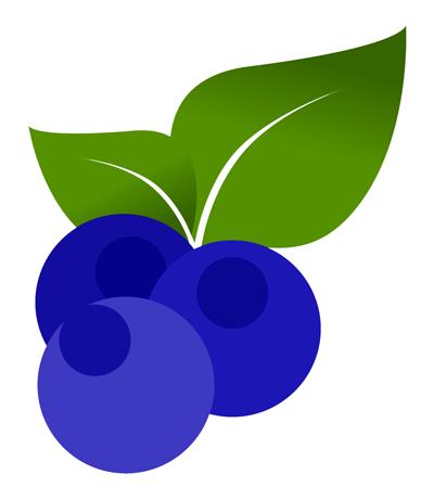 cultivo-arandano
