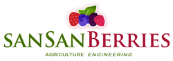 MUNDO BERRIES by SANSAN® Logo